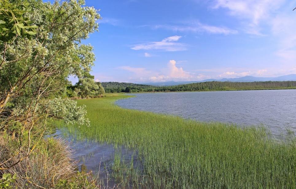 Sarıkum Gölü
