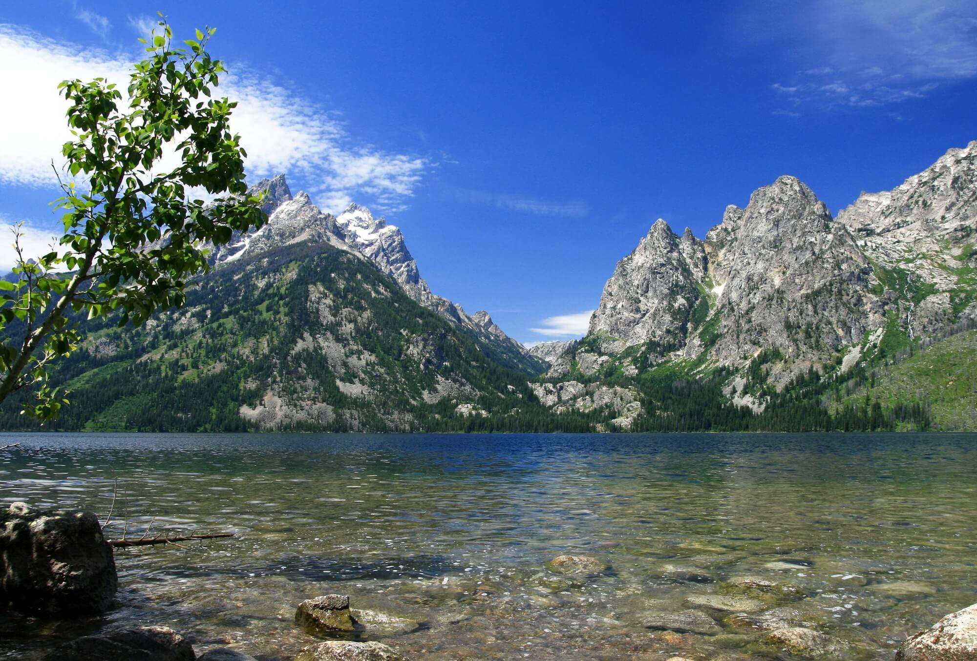 Jenny Gölü