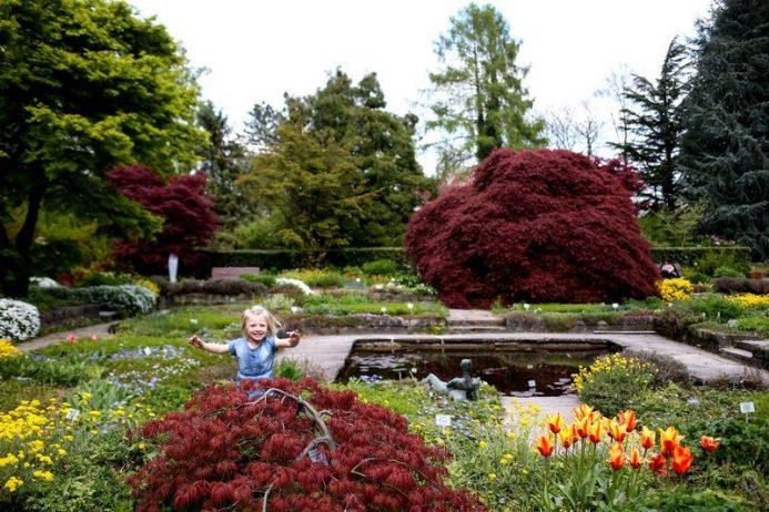 Queenstown Bahçeleri