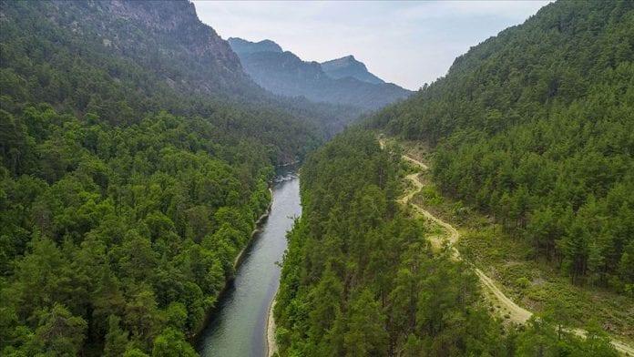 sığla ormanı tabiat parkı
