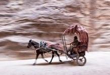 The Siq (Petra)