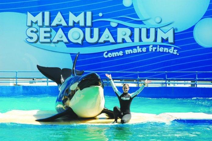 Miami Deniz Akvaryumu
