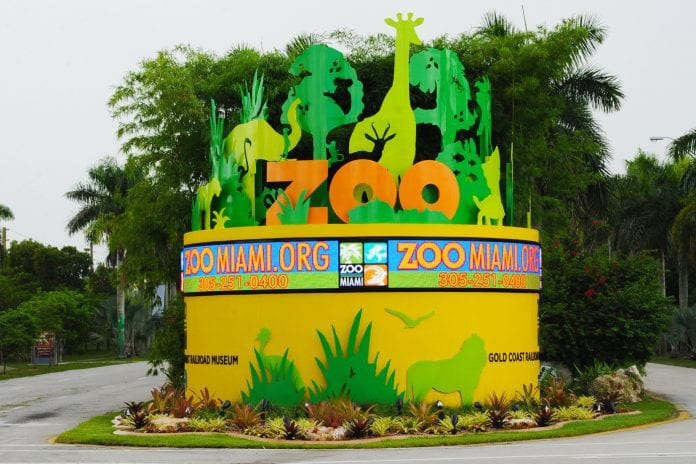 Miami Hayvanat Bahçesi