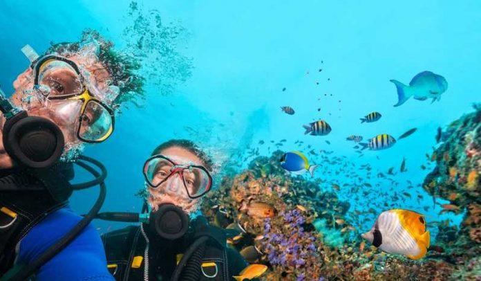 Dalış Turu - Scruba Diving