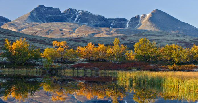 Rondane Ulusal Parkı