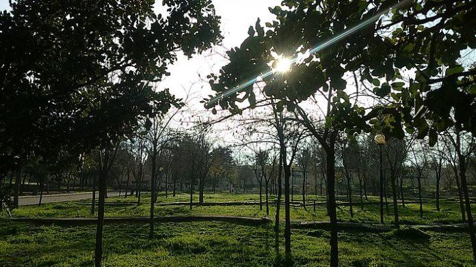 Al Hussein Parkı