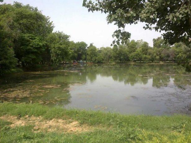 Chetak Parkı