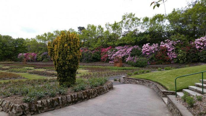 Hazlehead Parkı