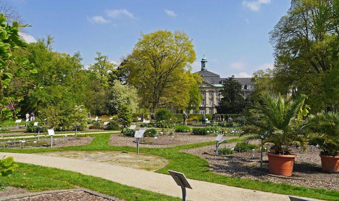 Münster Botanik Bahçe