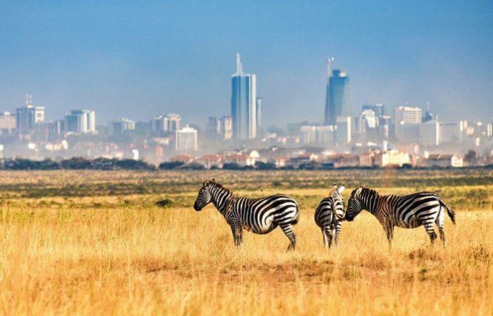 Nairobi Milli Parkı