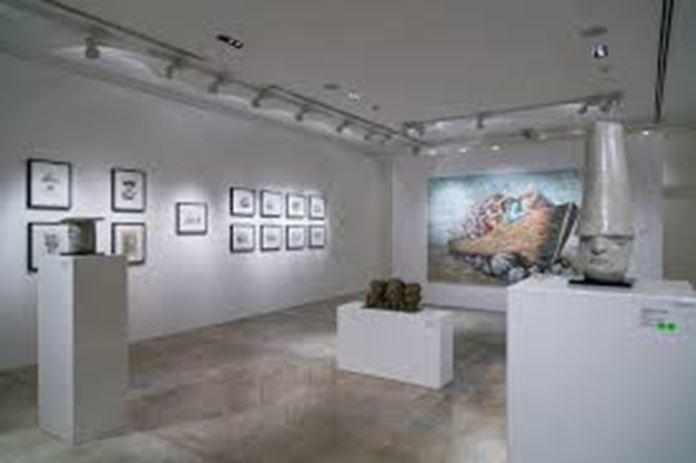 anima gallery