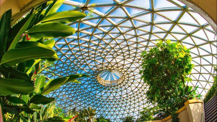 Brisbane Botanik Bahçesi