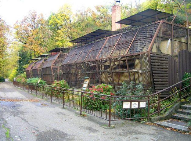 Brno Hayvanat Bahçesi