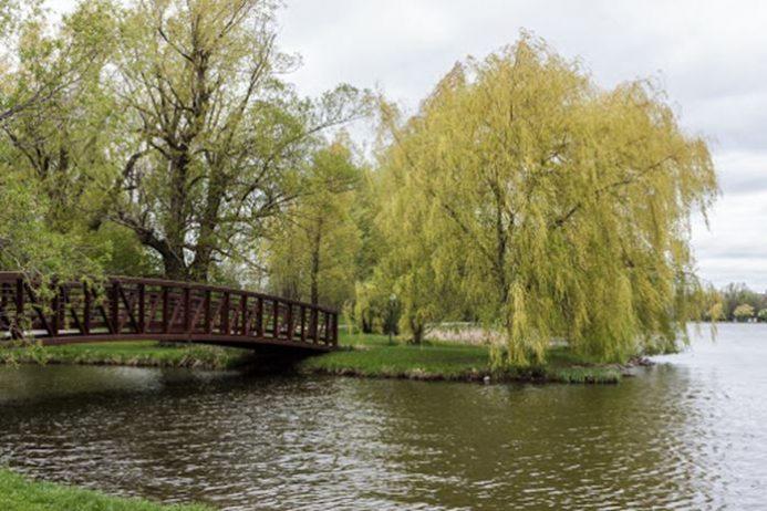 dominion arboretum