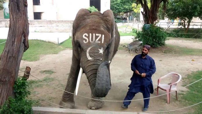 Lahor Hayvanat Bahçesi