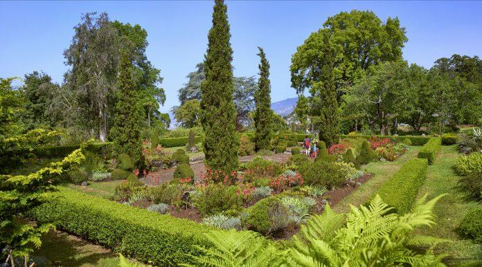palheiro garden