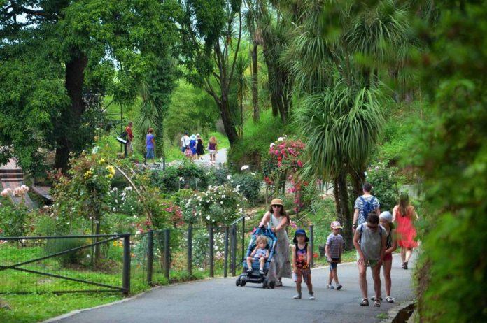 taskent botanik bahçesi