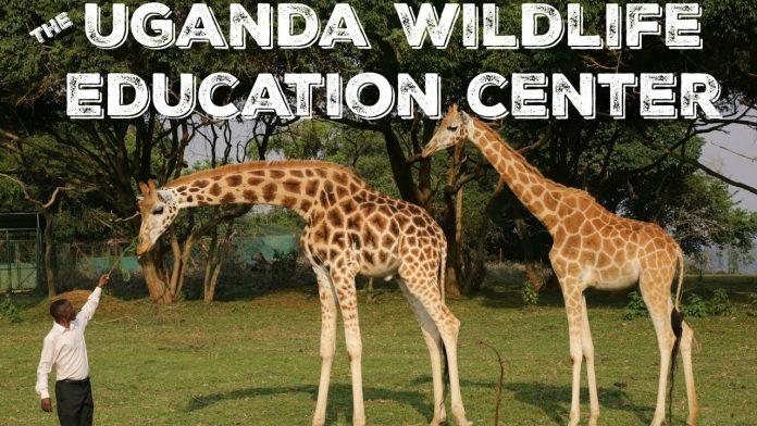 Uganda Wildlife Education Centre