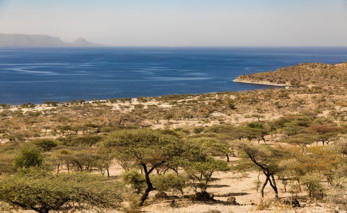 Abijatta Shalla Ulusal Parkı