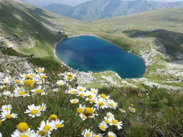 Pelister Ulusal Parkı