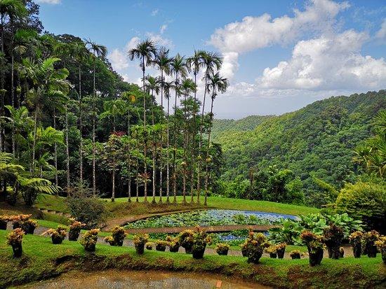 Balata Botanik Bahçesi