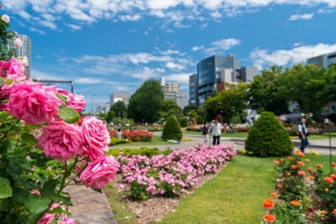 Hokkaido Üniversitesi Botanik Bahçesi