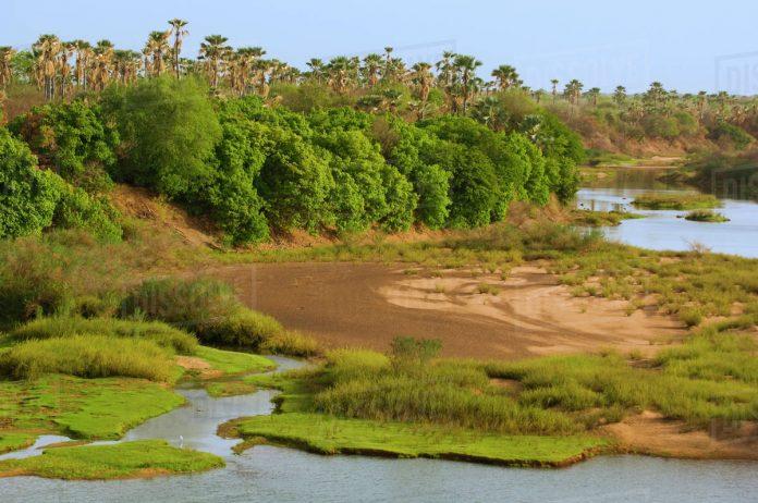 Niokolo Koba Parkı