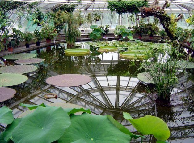 Alman - Fransız Bahçesi