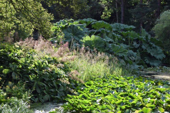 St. Andrews Botanic Garden