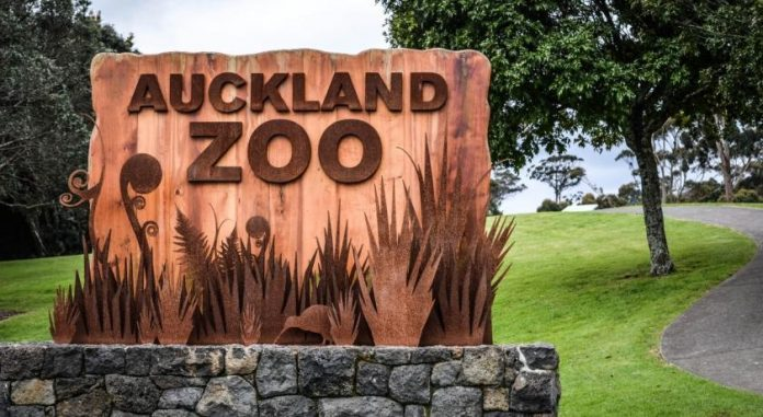 Auckland Hayvanat Bahçesi