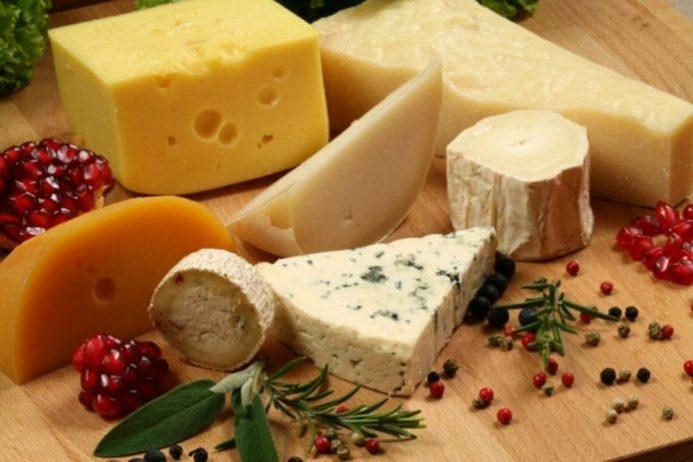 Fransız Peynirleri, Toulon