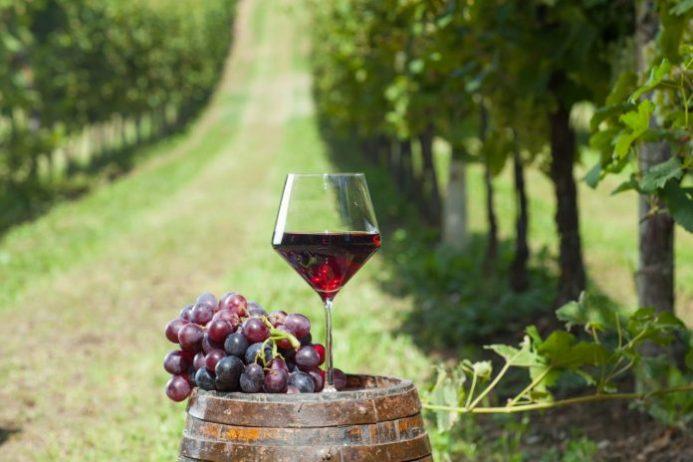 Saperavi Şarabı