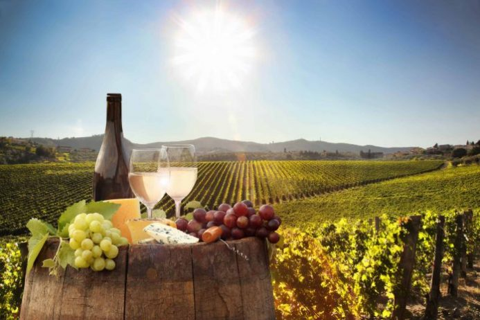 Belgrad Şarapları
