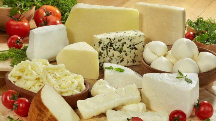 Peynir, Haugesund