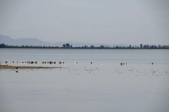 Akyatan Gölü