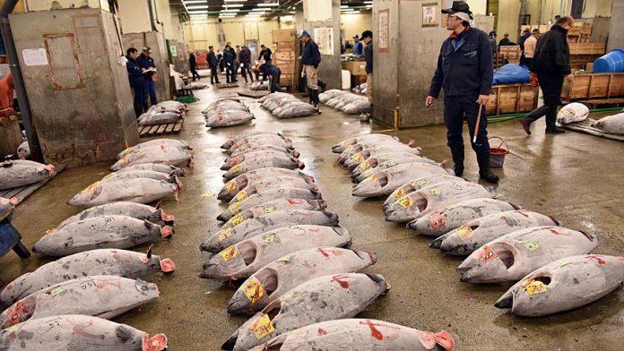 Tsukiji Balık Pazarı, Tokyo