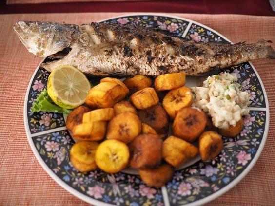 gabon balık