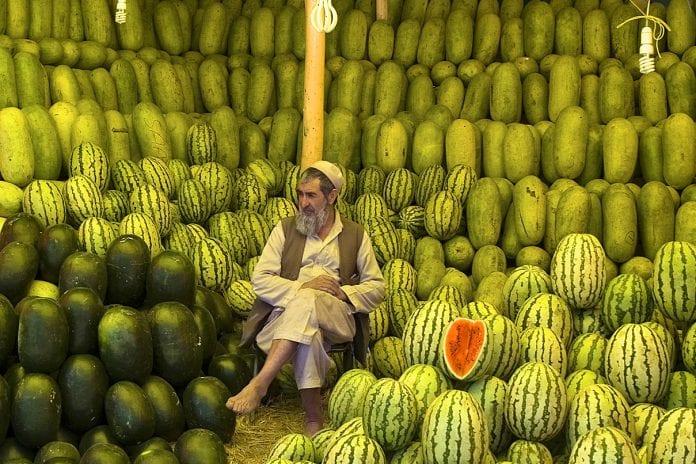 Kabil'de bir karpuz satıcısı