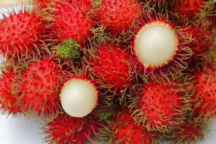 Rambutan meyvesi