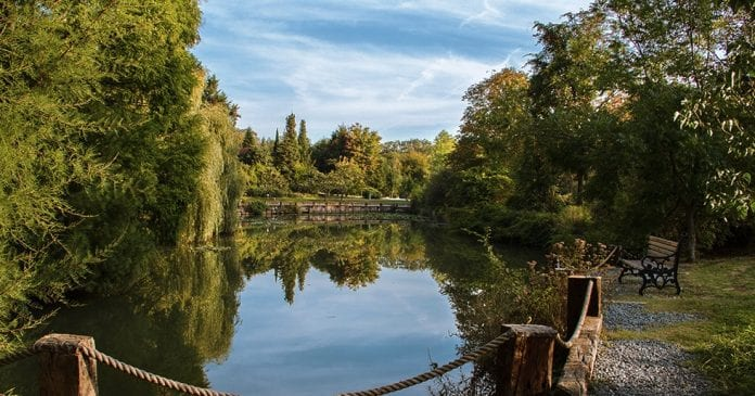 Atatürk Ağaç Parkı