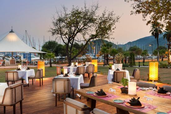 daidala restaurant
