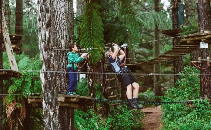 Porirua Adrenalin Ormanı