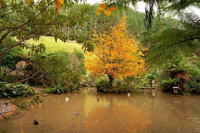 Staglands Doğal Yaşam Koruma Alanı