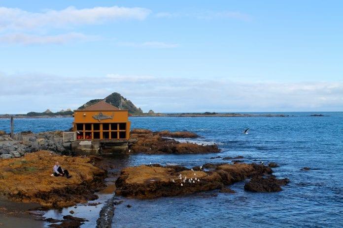 Taputeranga Marine Reserve