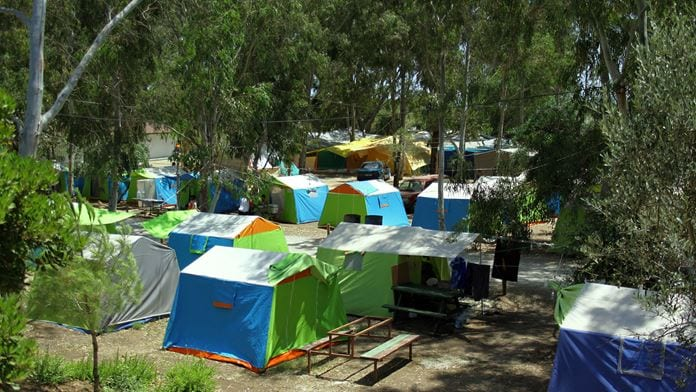 Gümüldür Orman Kampı