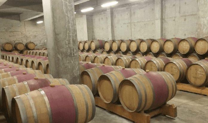 şarap fabrikaları gezisi