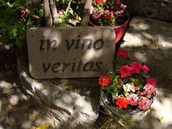 vino şarap evi