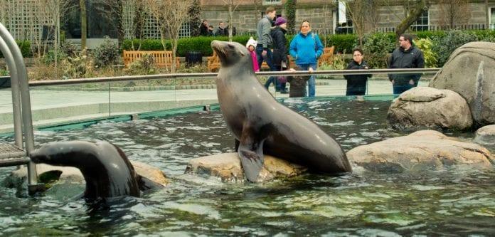 Central Park Hayvanat Bahçesi