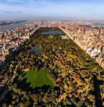 Central Park'ta Yapılacak Şeyler