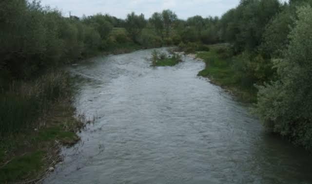 delice nehri